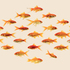 20150216213022-goldfish58001web