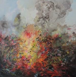 20150218203141-wild_fire