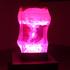 20150305161155-li_hui_blooming_led_lights_acrylic_wood_base_85x68x68cm_2012
