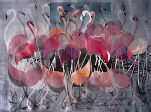 Flamingos_