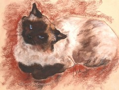 20150405044156-spirit-cat-art-pastel-drawing-by-cori-solomon-1024x778