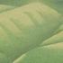 20150413192751-grassland-49_17x47_2014-web