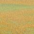 20150413195948-grassland-36_2012_17x47-web