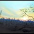 20110113081755-sunset_at_kuppalli_size_12__x24__