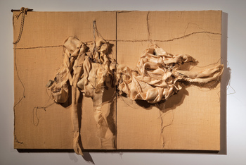 20150517170956-eighteen_inches_rgb_sm_50x74x8_inches_diptych__mixed_media__burlap_and_objects