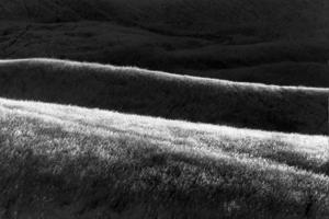 Hills___1
