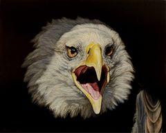 20150625214018-eagle_bojanvisualart