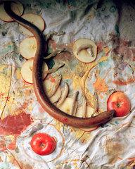 Apple Snake, Sam Adams