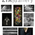 20150720214219-postcard_zia_artists_phonow_08-2015lowres