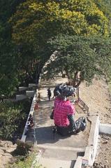 , siddhartha kararwal