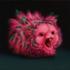 Night_terror_5__guinea_pig_8x8