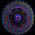 20151001052353-whitney_-permutations