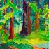20151010185611-daar_0121_tilden_redwoods__berkeley