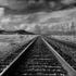 Tracks_west_of_nipton