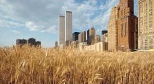 20151016180158-agnes-denes-with-new-york-financial-center-1982-40