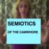 20151123205642-video_still_semiotics