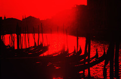 20160214193519-red_venice_5