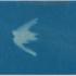 20160220151112-michele-oka-doner-cyanotype2-lores