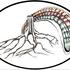 20160301130141-2print_a3_treerainbow