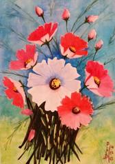 20160315070452-cosmos_flowers_2