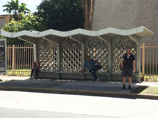 Photo Documentation (Cement Bus Stop, San Juan, Puerto Rico), Edra Soto