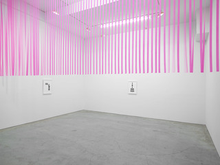 Je Respire (avec Duchamp), Tony Feher