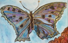 20160414060539-new_butterfly_on_blue_watercolor_land_sea_sky_collection