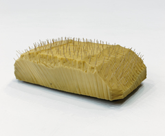 20160510174511-porcupine-photo-aurea-a-lien-mole-1391517653