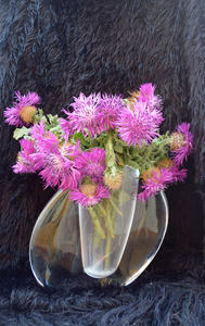20160523202915-thistles_in_a_vase_2