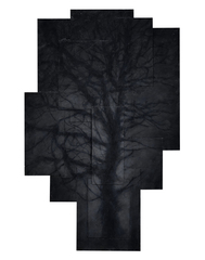 20160524090007-tree_webhd