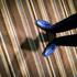 20160524203912-jane_szabo_blue_gators