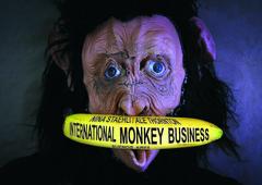 20160525160136-international_monkey_business_nina_staehli_ale_thornton
