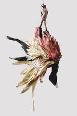 Turkey Vulture, Tamara Kostianovsky