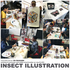 20160623180527-pdpackard_insectillustrationworkshop