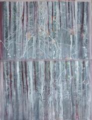 20160623195502-pine_barrens__nj
